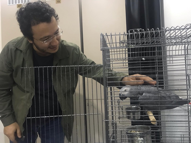 Oytun Erbaş papağan seviyor.