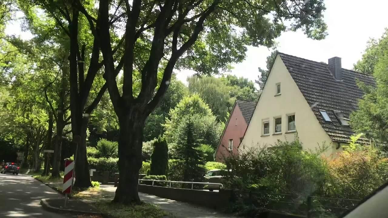 Birçok ağaç ve ortalarında bir bina var.
