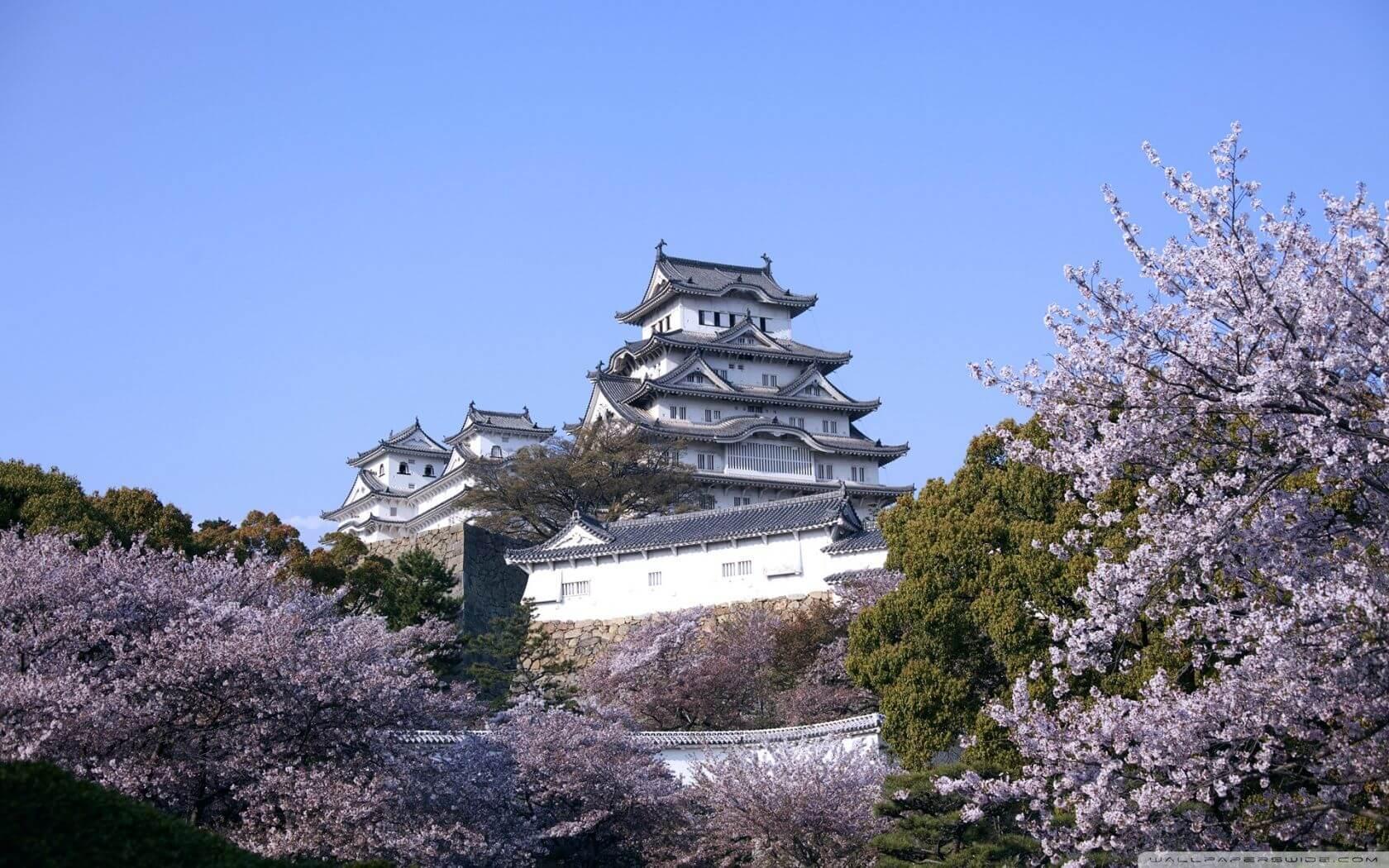 Tepede bir yapıt ve pembe çiçekli ağaçlar var.