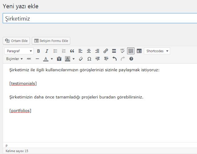 wordpress temalı bir siteye ait yeni yazı ekleme paneli görseli